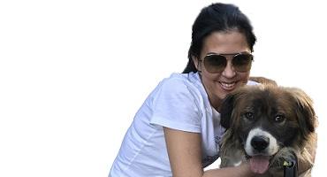 Фонд помощи бездомным животным